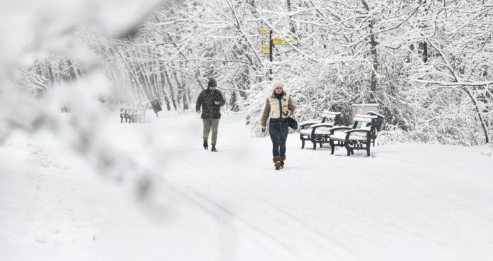Muscovites promised frost next week