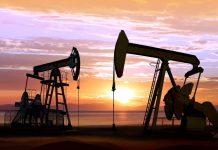 The price of WTI crude oil fell below $ 20