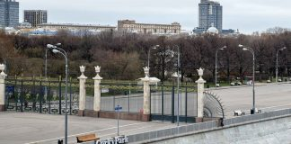 Muscovites are invited to online a walk in the Park